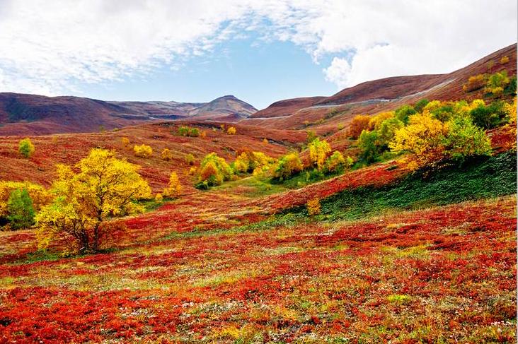 http://yanji.ru/wp-content/uploads/2011/12/001ec949f7970fe13cb5511.jpg